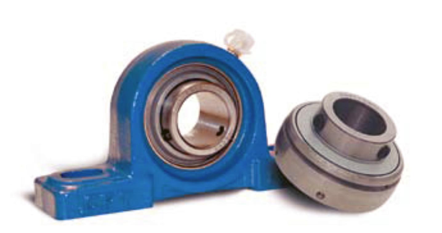Triple sealed bearing